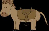 علامت زین اسب در دفینه یابی